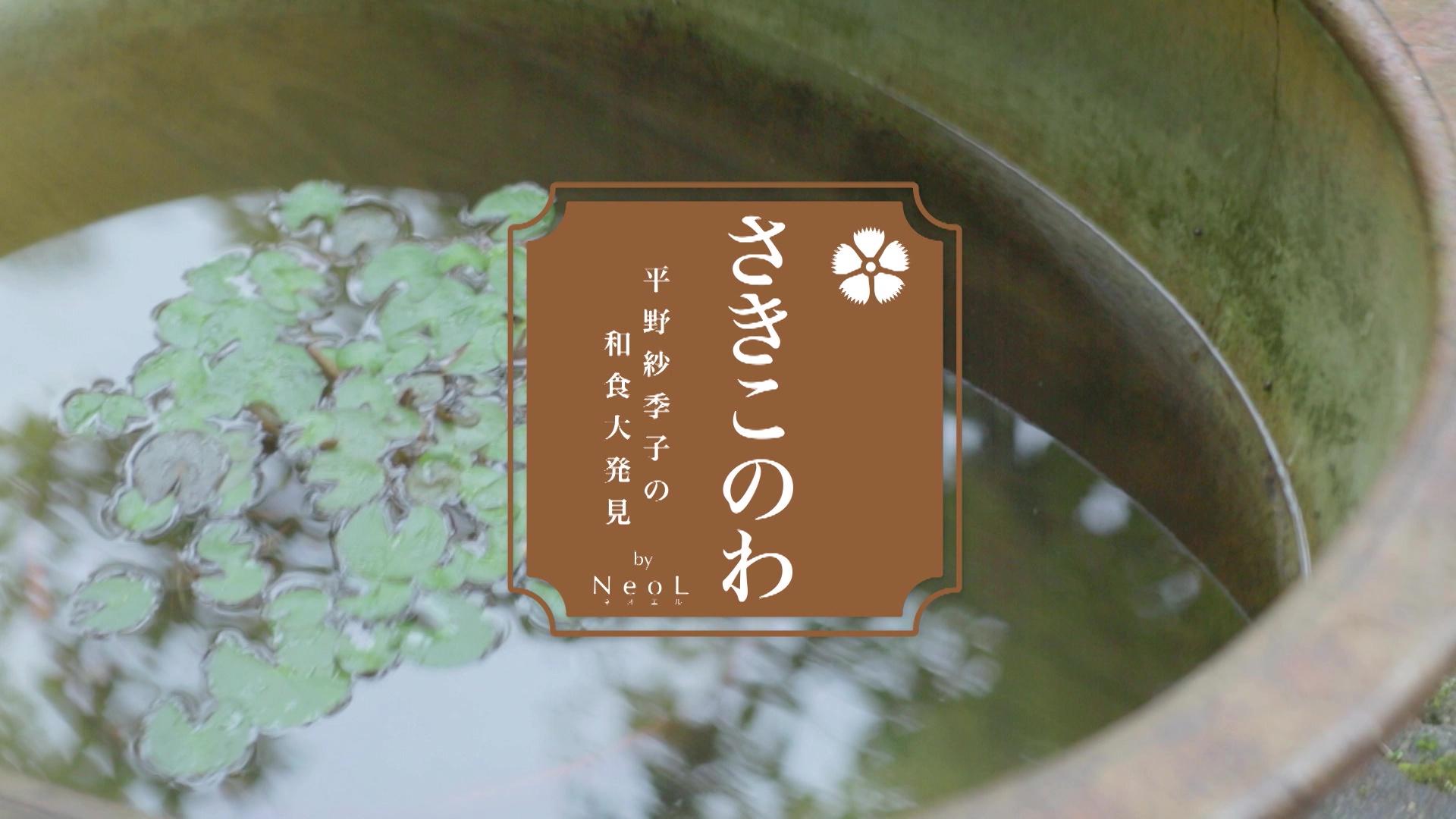 【CS番組】さきこのわ ~平野紗季子の和食大発見~(2014/30min)